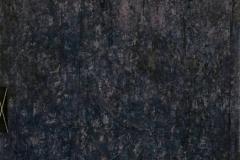 37. Zapis -INFO (2007, 100x70cm, akryl, karton)